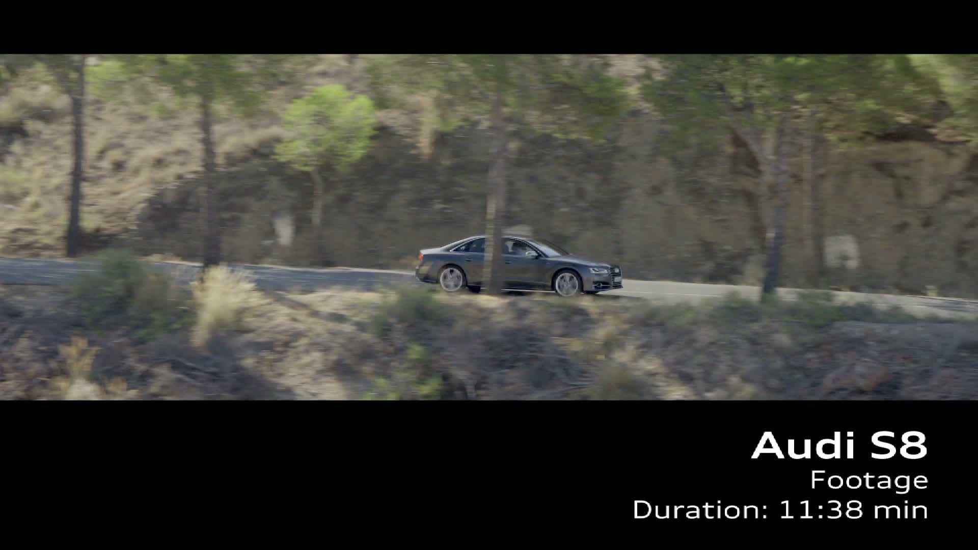 Der Audi S8