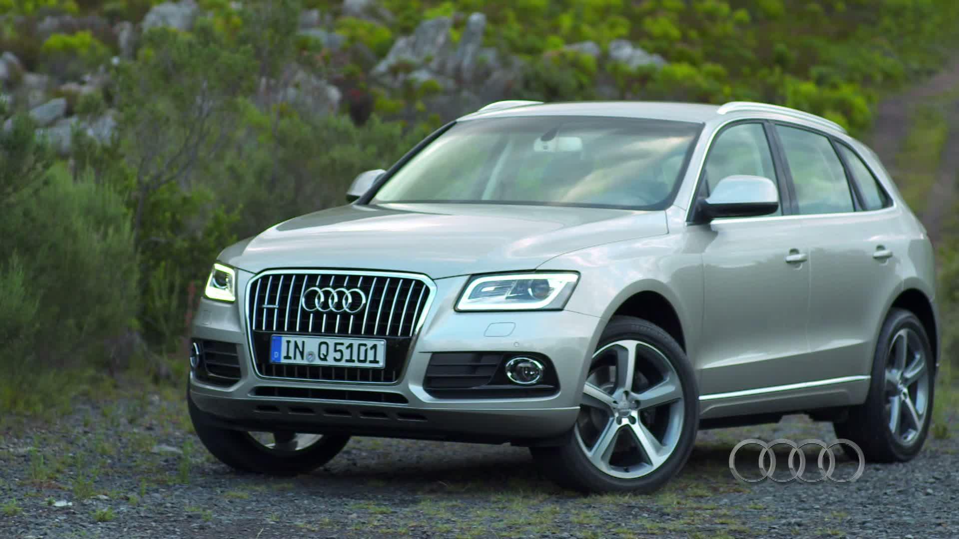Der Audi Q5