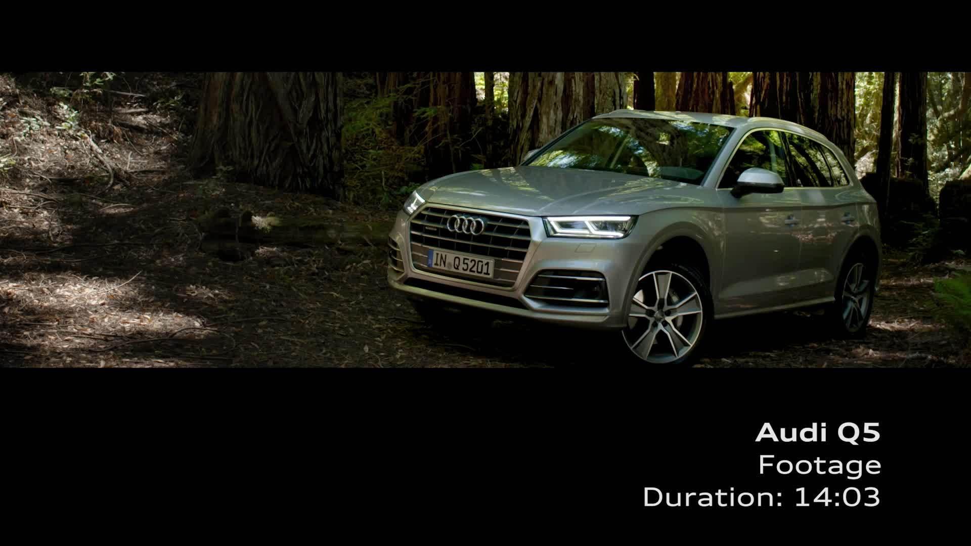 Audi Q5 - Footage Florett silver