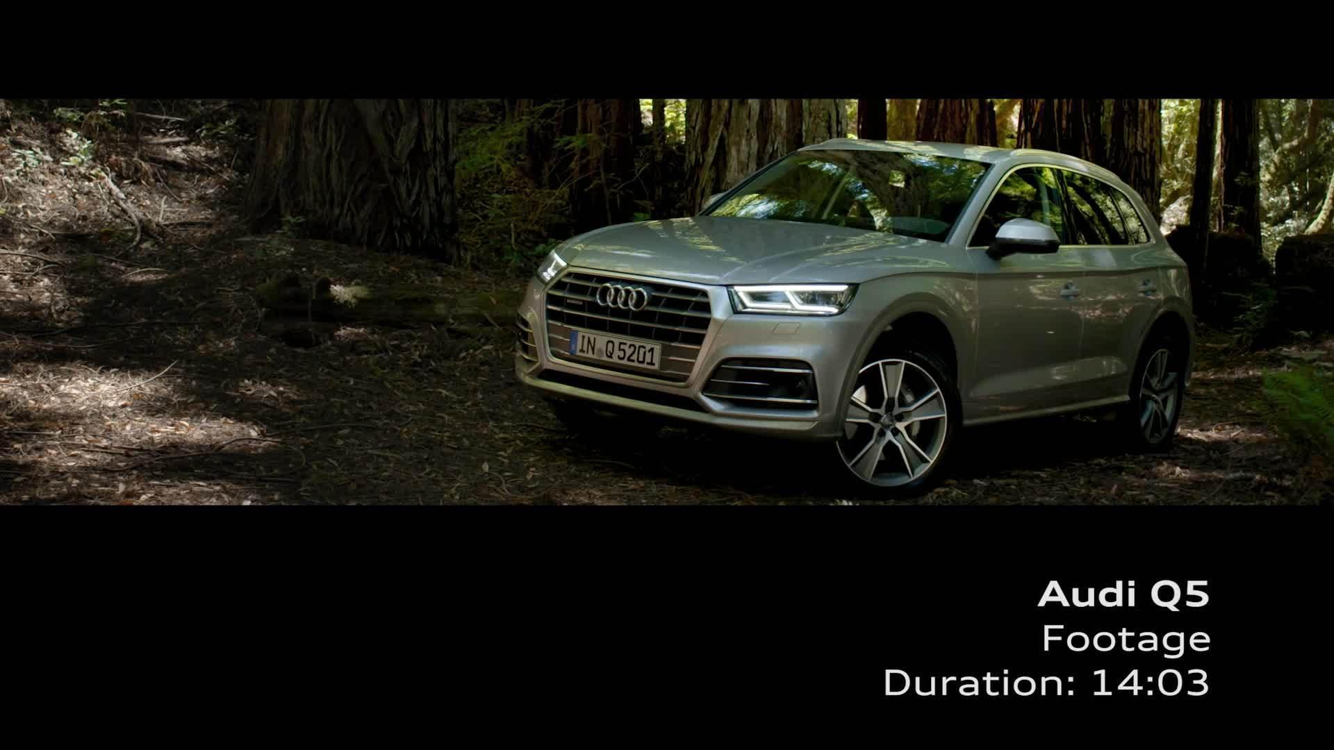 Audi Q5 - Footage Florettsilber