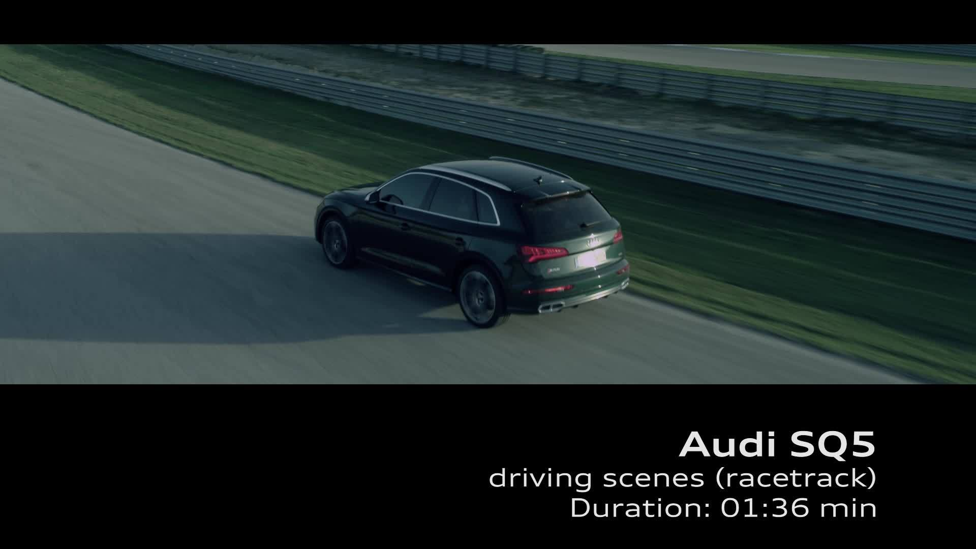 The Audi SQ5 - Footage