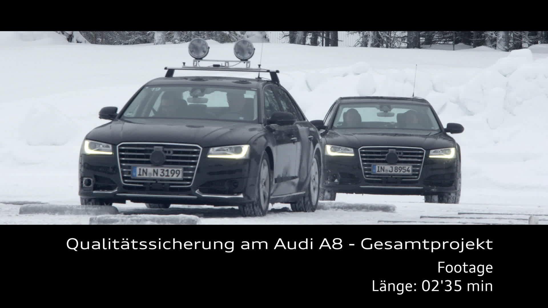 Qualitätssicherung am Audi A8 Gesamtprojekt