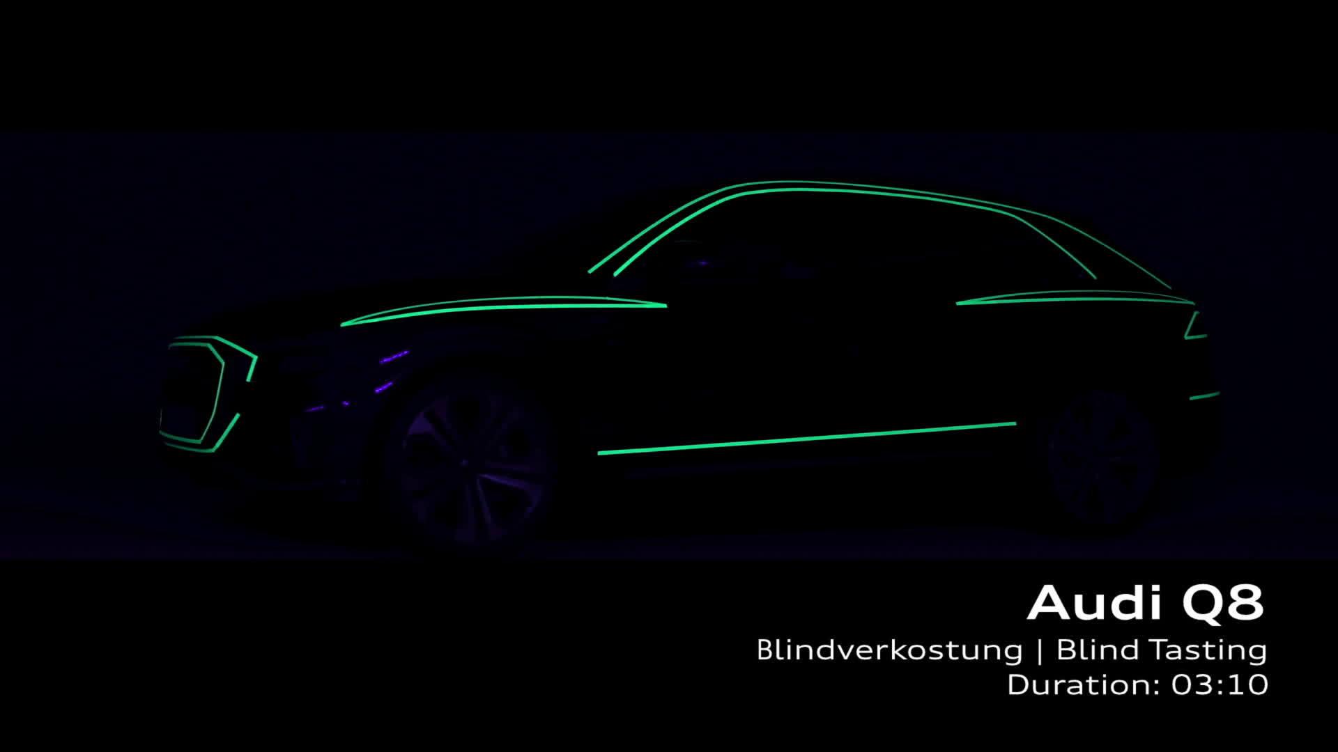 Footage Audi Q8 Blindverkostung