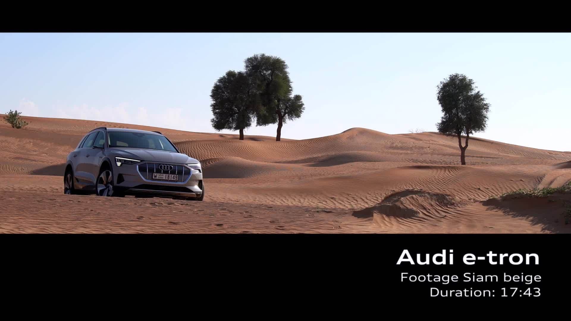 Audi e-tron Siam Beige (Footage)